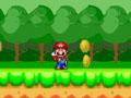 Super Mario Coin Catcher
